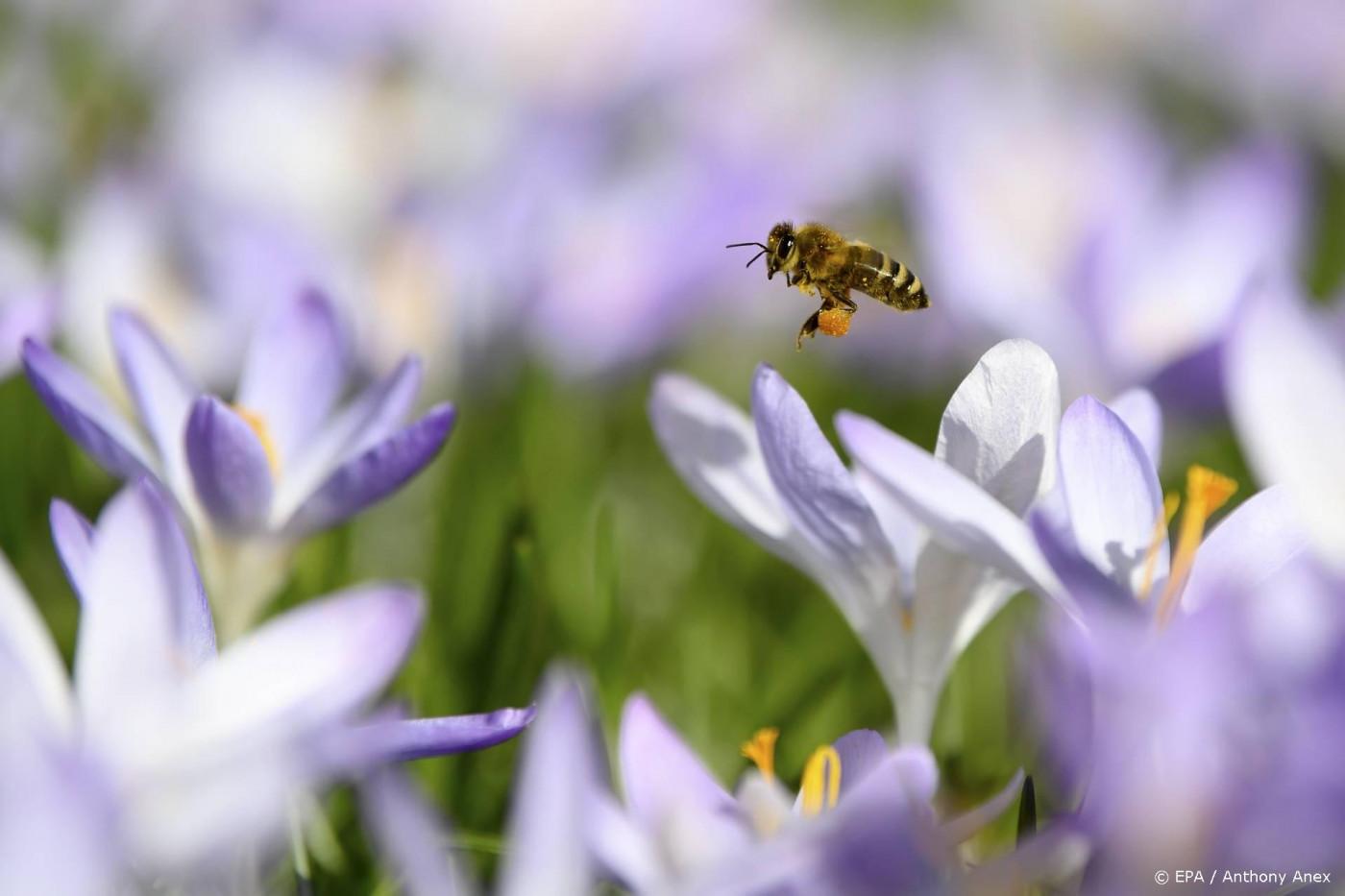 Onderzoekers volgen insectenpopulatie vanuit de ruimte
