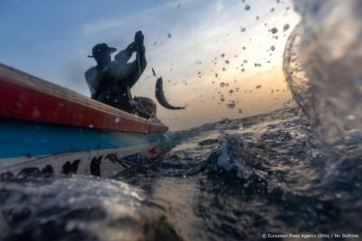 'Robotvissen kunnen straks oceanen controleren op milieuschade'